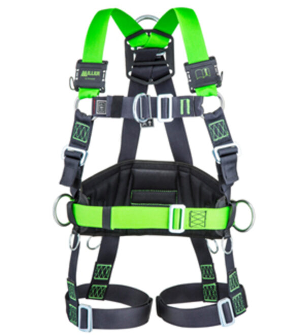 Miller H-design Harness